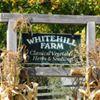 Whitehill Farm