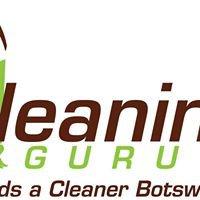 Cleaning GURU
