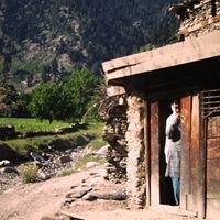 Afghan Interiors