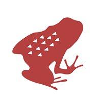 RFD Red Frog Design Ltd