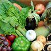The Organic Farm Shop