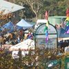 Leura First Sunday Markets