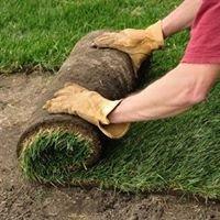 Landscaping Pros Chula Vista