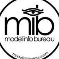 Model Info Bureau