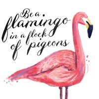 Mandy Taverner - Independent Partner at Flamingo Paperie