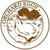 Orchard Eggs