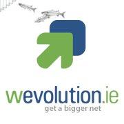 Online Marketing Wevolution