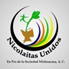 Nicolaitas Unidos A.C Oficial