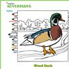 Audubon Adventures thumb
