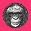 Ape Cognition & Conservation Initiative - ACCI