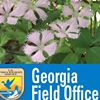 Georgia Ecological Services Field Office