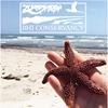 Bald Head Island Conservancy - BHI Conservancy