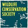 Wildlife Conservation Society-India
