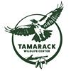 Tamarack Wildlife Rehabilitation and Education Center