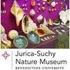 Jurica-Suchy Nature Museum at Benedictine University