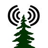 Redwood Planet Media