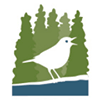 Boreal Songbird Initiative