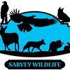 Sarvey Wildlife Care Center
