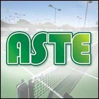 ASTE Synthetic Turf