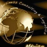 Business Consulting & Logistics- Mexico