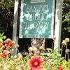 Sanibel Public Library