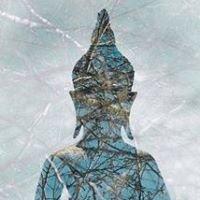Valley Insight Meditation Society
