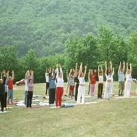 US Yoga Academy Arizona