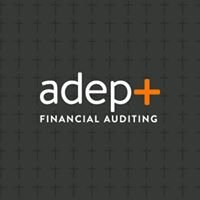 Adept Financial Auditing
