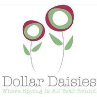 Dollar Daisies