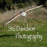Stu Davidson Photography