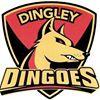 Dingley Football Netball Club