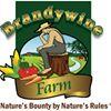 Brandywine Farm - The Thinking Farmer