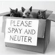 Sullivan County Humane Society
