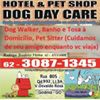 Hotel & Pet Shop Dog Day Care