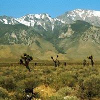 High Desert Global Services