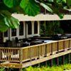 Rainforest & Ocean View Inn