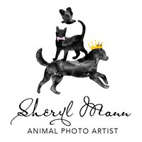 Sheryl Mann, Animal Photo Artist