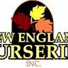New England Nurseries, Inc.