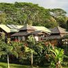 Your Hawaiian Retreat
