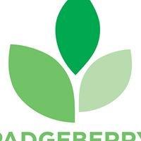 Padgeberry Organic Farm