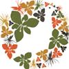 Overberg Renosterveld Conservation Trust
