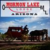 Mormon Lake Lodge and Steakhouse