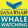 Dana Wharf Whale Watch