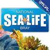 Sea life Bray Aquarium