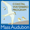 Mass Audubon Coastal Waterbird Program