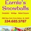 Earnie's Hotdogs, Snowballs, & Food Trucks