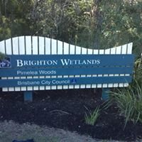 Brighton Wetlands Habitat Group