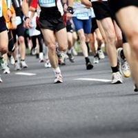 Florida Endurance Races