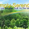 Simply Serendipity