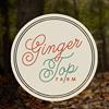 Ginger Top Farm